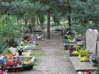 Cmentarz dla zwierząt