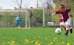 Trawa na boisko. Z jakich traw można zrobić boisko do piłki nożnej w ogrodzie