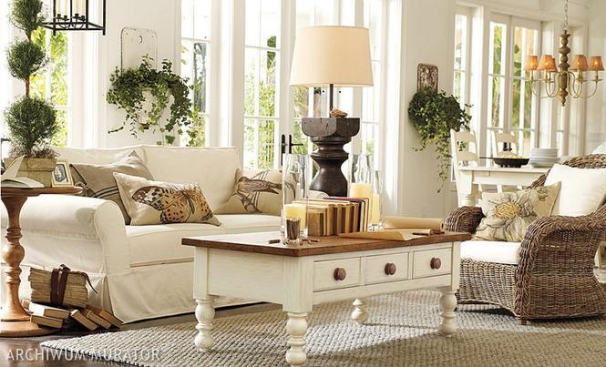 Aranżacje jasnego salonu w bieli