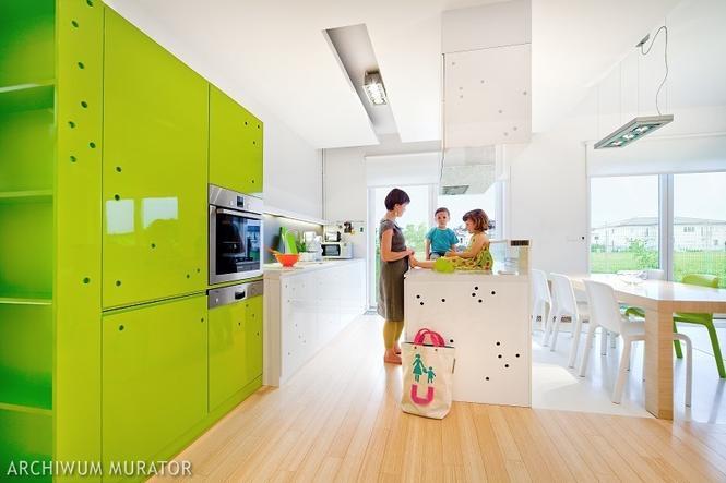 Kolorowe kuchnie - zielona