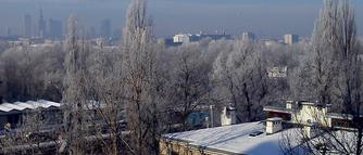 Jak rząd i organizacje ekologiczne reagują na smog?