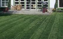 Narzędzia do pielęgnacji trawnika